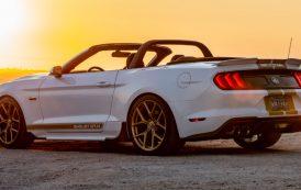 700 Beygirlik 2019 Shelby GT Mustang Convertible